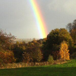 Rainbow on golf course